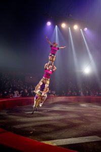 bicyclettes acrobatiques Alexis, Eros & le duo LYD